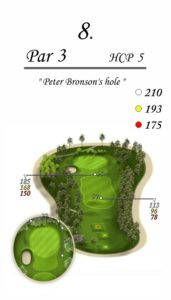 Karolinka Golf Park - dołek 8